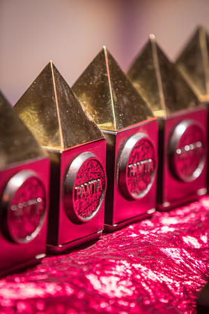 2014 PAMTA Awards