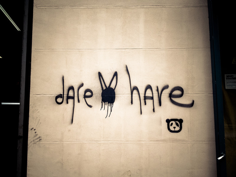 dare hare.jpg