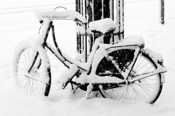 060303 Schnee wie nicht in 15 Jahren