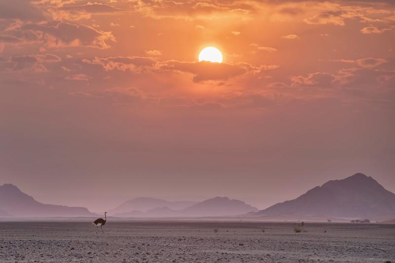 Namibia 69A4706.jpg