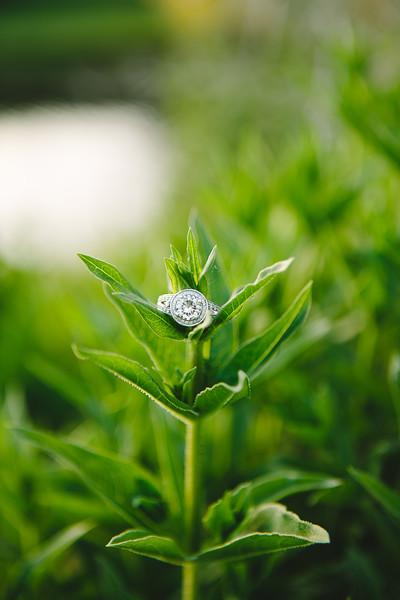 Bridals-443.jpg