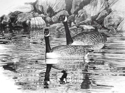 """Geese"" (pencil) by Carol Foerster"