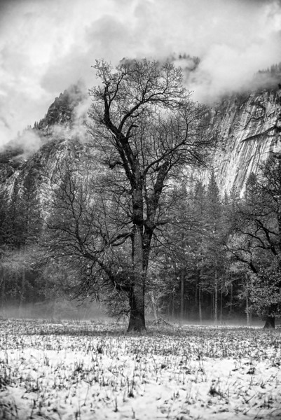 20141213_Yosemite_3075.jpg