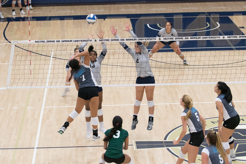 HPU Volleyball-92606.jpg