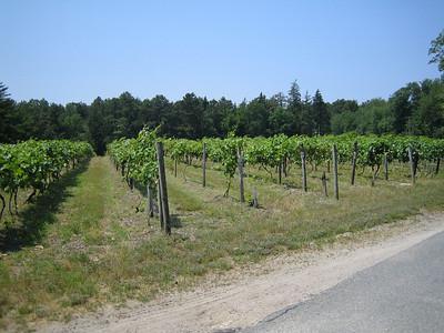 Renault Winery June 2005