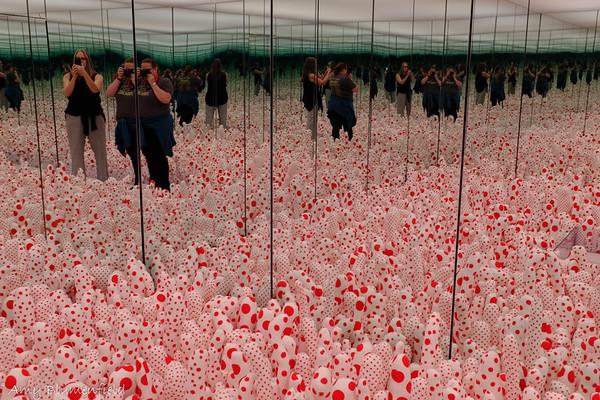 Kusama exhibit at SAM
