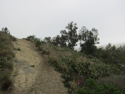 High Horse Trails