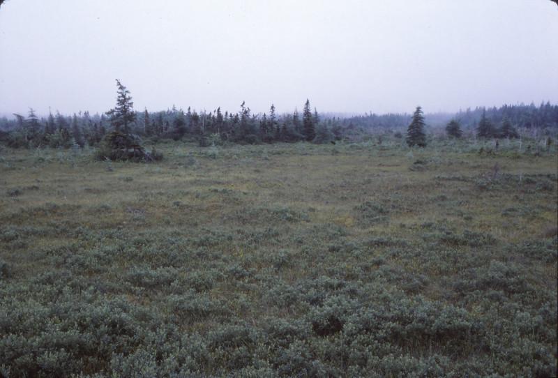 Nova Scotia 1983 - 152.jpg