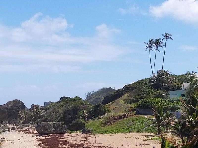 Barbados (25).jpg