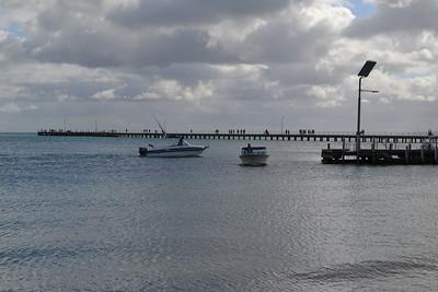 Sorrento Ferry 2013