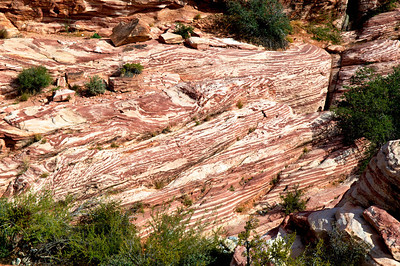 Red Rock 11-18-2012