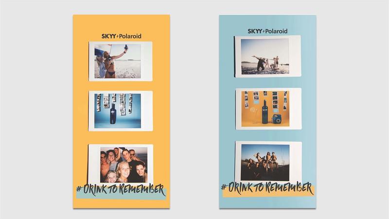 SKYY Presentation_Page_09.jpg