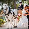 Backyward wedding photos