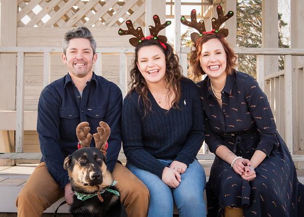 Reindeer Family at East Wharf Beach   Madison CT