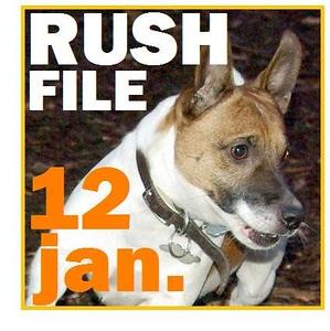 12 JAN. RUSH FILE