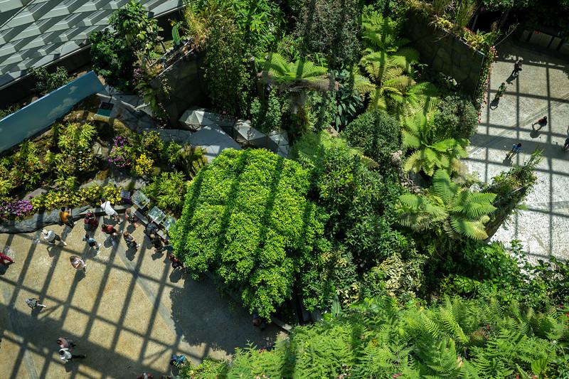 Singapore-19-038.jpg