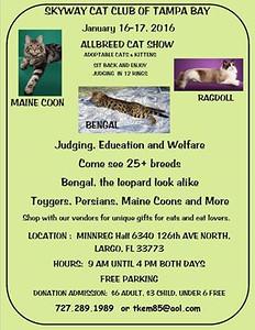 2016-01-16...Skyway Cat Club of Tampa bay Cat Show