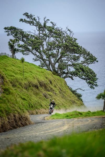 2018 KTM New Zealand Adventure Rallye - Northland (635).jpg