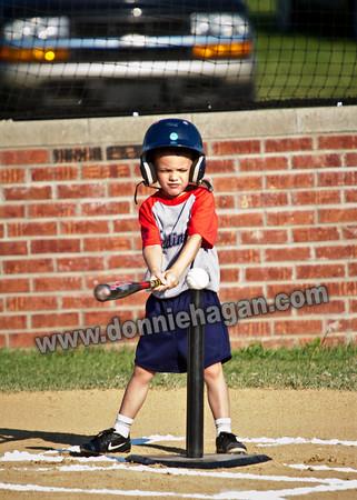 2010 Baseball and Softball Pictures