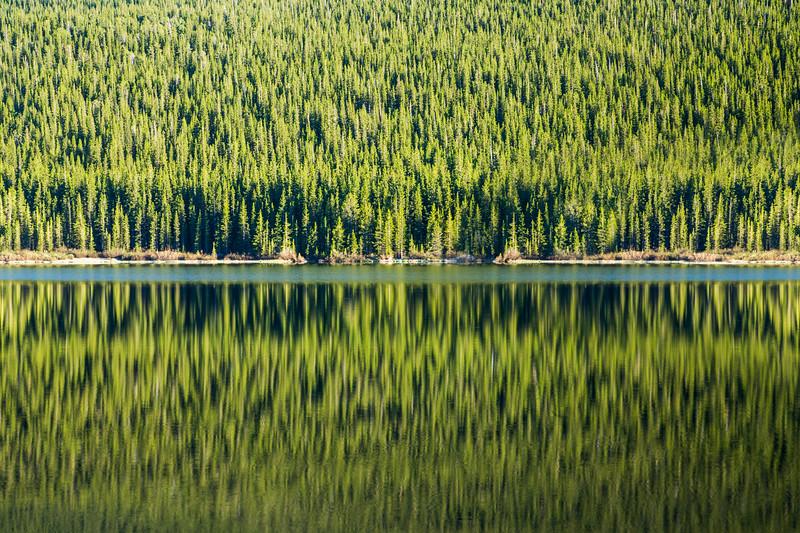 Echo Lake Reflection