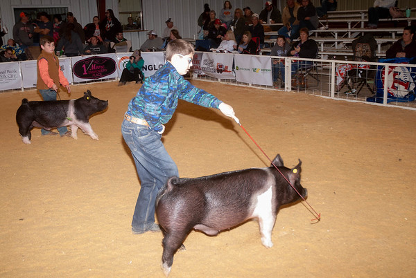 Hobart Swine Show 1/26/2019