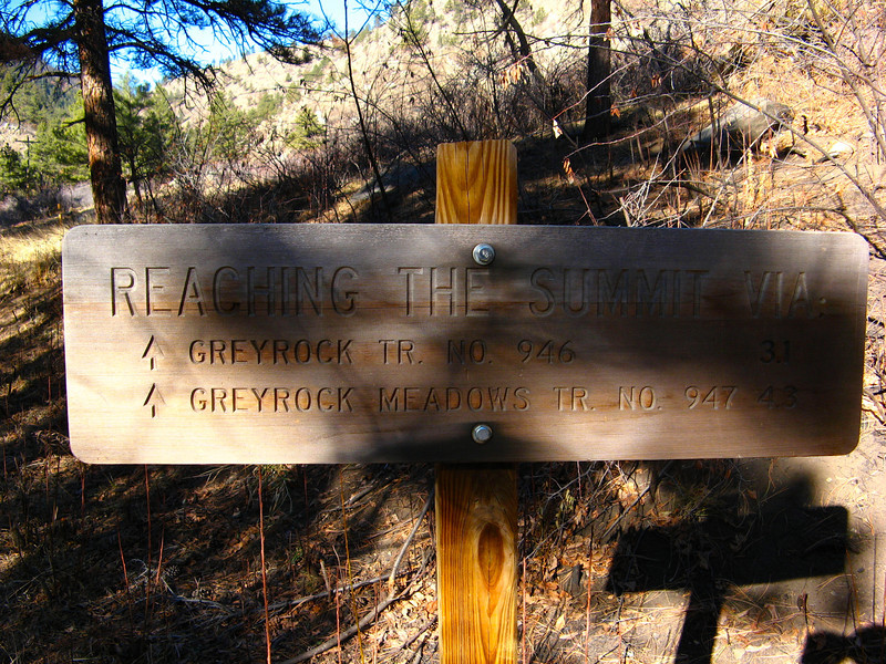 I took the meadows trail up, and the Greyrock Tr back