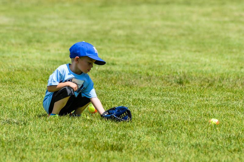 Baseball-20140531-114.jpg