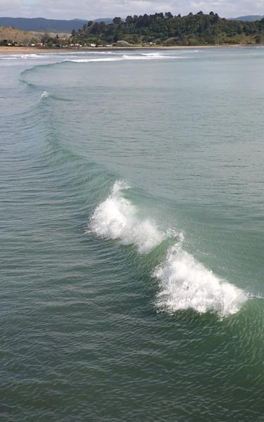 Welle an der Tolaga Bay