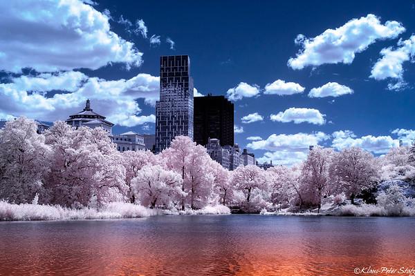 Central Park (IR) August 2020