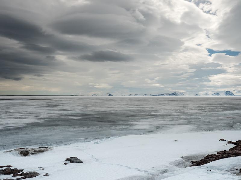 Bylot Island-1020932.jpg