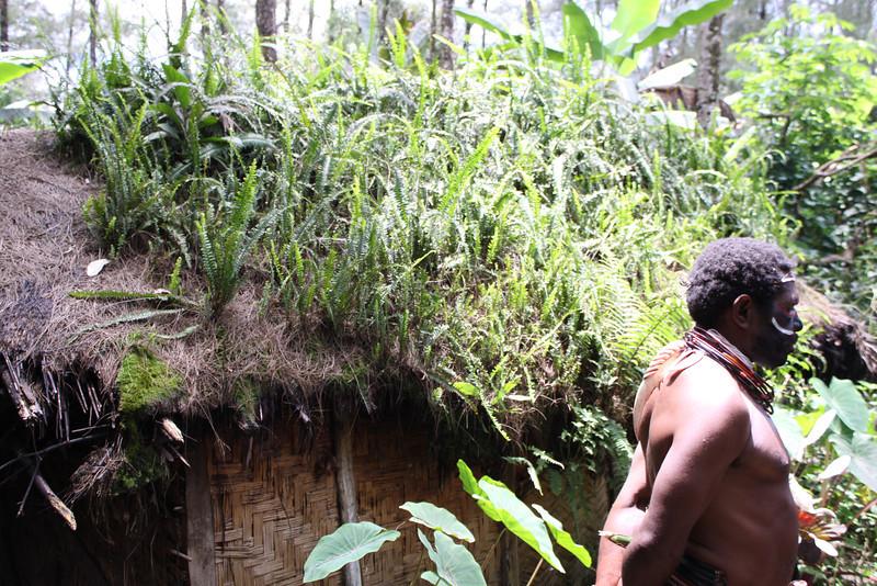 Papua New Guinea 2011 044.JPG