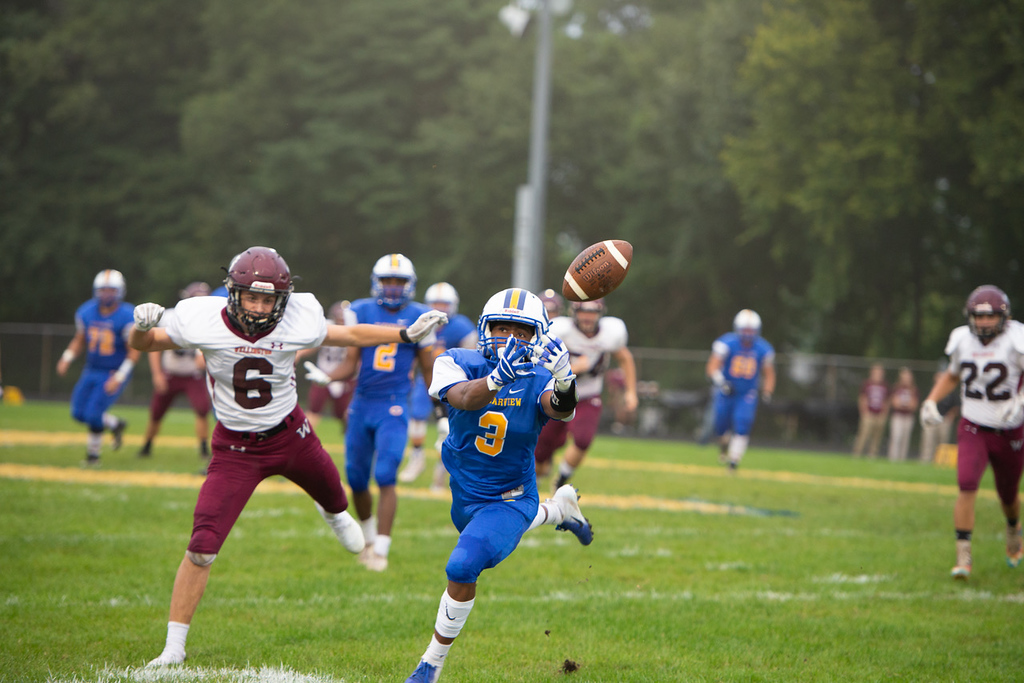 . Aimee Bielozer - The Morning Journal<br> Clearview\'s Joseph Norris tries to reel in a throw against Wellington on Sept. 14.
