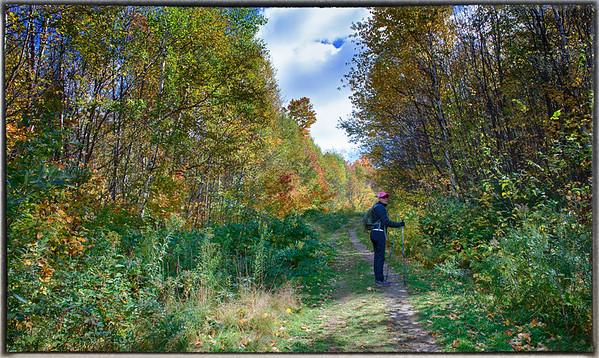 Stowe Pinnacle Trail Fall 2013