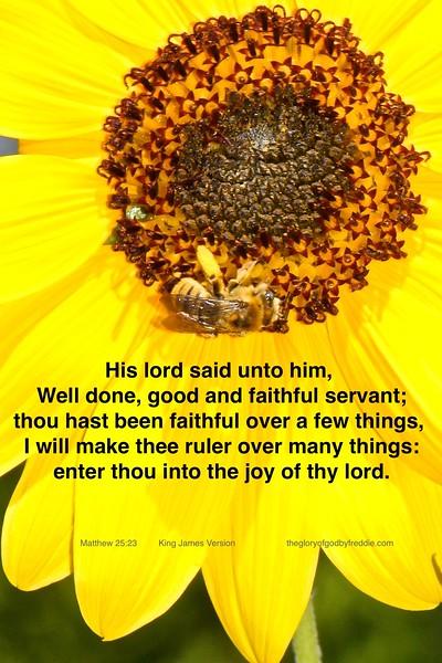 Matthew 25-23 g .jpg