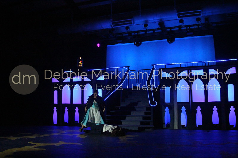 DebbieMarkhamPhoto-Opening Night Beauty and the Beast446_.JPG