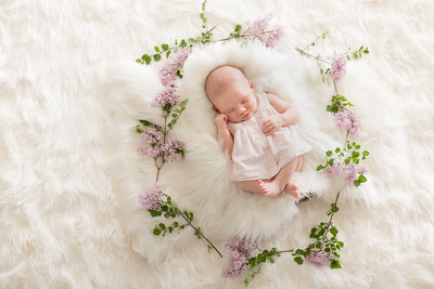 Hailey Buell- Newborn Portraits Natural Nature Flowers Lilacs High Key Marie Jon Cameron Mother Father Brother Sister Mom Dad Siblings Family Baby Western Ave New England Photo Studio Kimberly Hatch Photography Southampton Northampton Westfield Springfiel