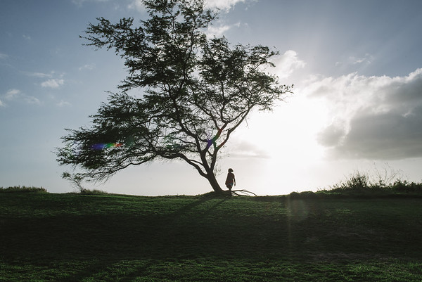 Maui 5 year Anniversary