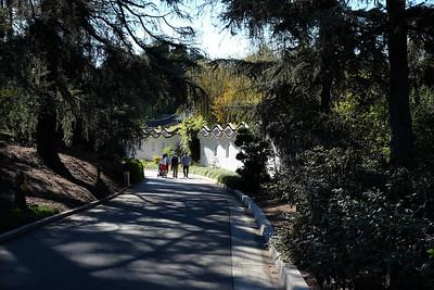 Huntington Gardens & Library - San Marino, CA