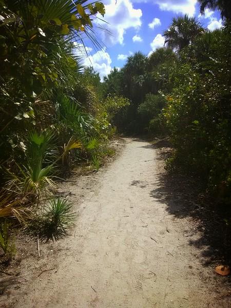 IMG_Florida (2).jpeg