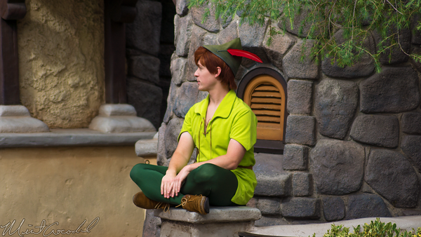 Disneyland Resort, Disneyland, Fantasyland, Peter, Pan