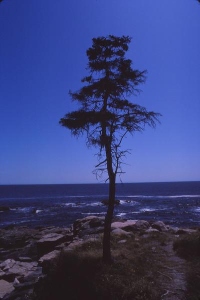 Nova Scotia 1983 - 072.jpg