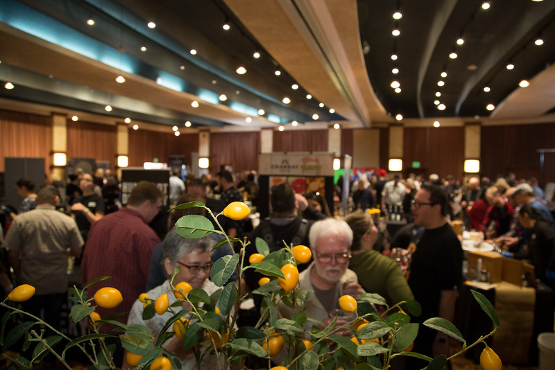 DistilleryFestival2020-Santa Rosa-131-SocialMediaSize.jpg