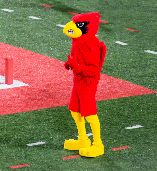 The Cardinal mascot is beginning to droop.