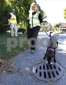 looking-out-for-no-2-dogs-sniff-out-fecal-pollution