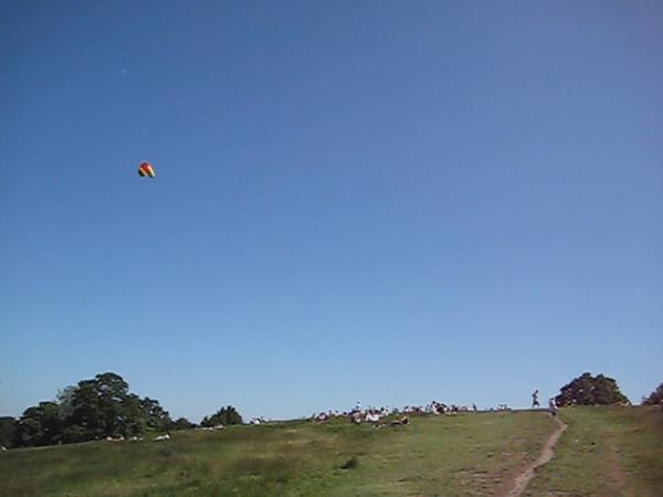 kites.avi