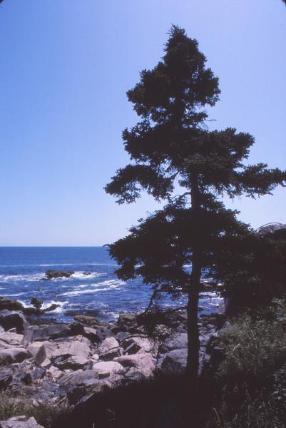 Nova Scotia 1983 - 116.jpg