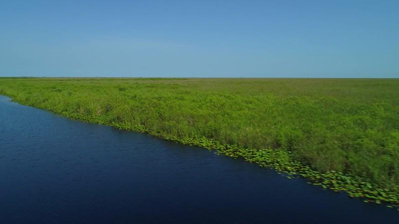 Aerial Florida Everglades stock footage 4k 24p