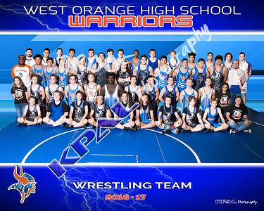2016-17 Wrestling Team Pictures