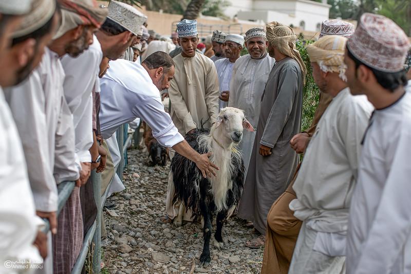 CN6W8852-Edit- Oman.jpg