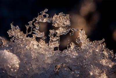 Melting Snow Ice Sculptures